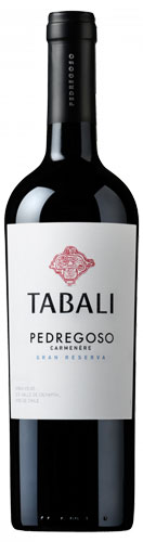 Tabali Pedregoso Gran Reserva Carmenere